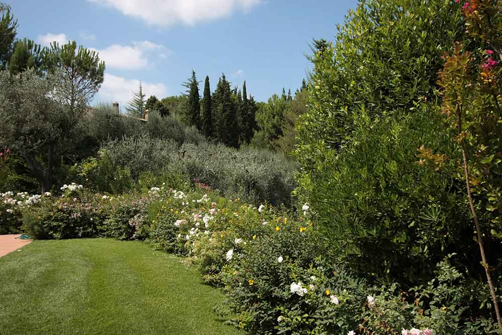 Realizzazione e manutenzione giardini a pisa livorno firenze for Manutenzione giardini