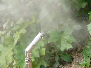 Sistemi antizanzare per la lotta alle zanzare in giardino - Lotta alle talpe in giardino ...
