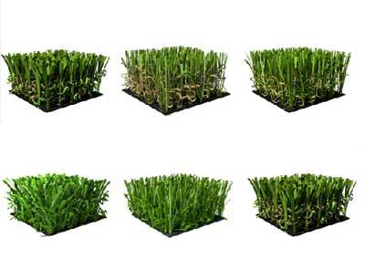 Prato sintetico per giardino posa professionale a pisa e - Erba sintetica da giardino ...