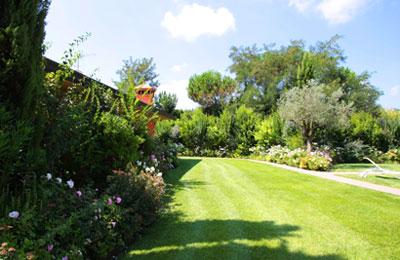 Realizzazione manutenzione giardini pisa livorno lucca firenze for Realizzazione giardini privati