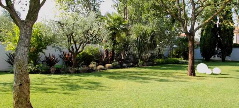 Progettazione e creazione di giardini a pisa lucca livorno - Alberi condominiali in giardini privati ...